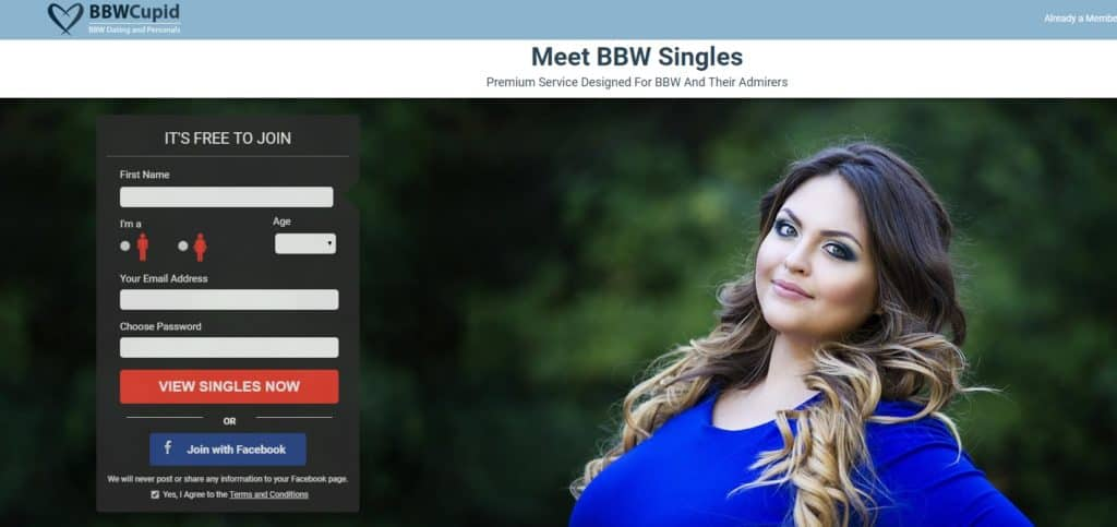 Bbw speed dating online