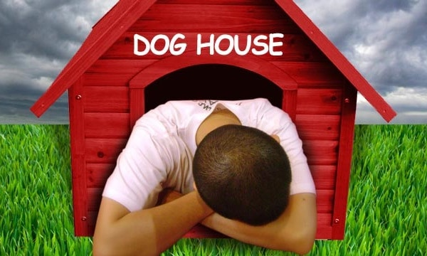 Gifts to Get Out of the Dog House