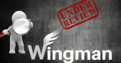 Wingman Dating App Review
