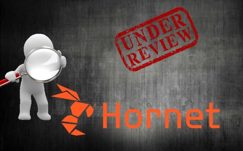 Hornet gay review